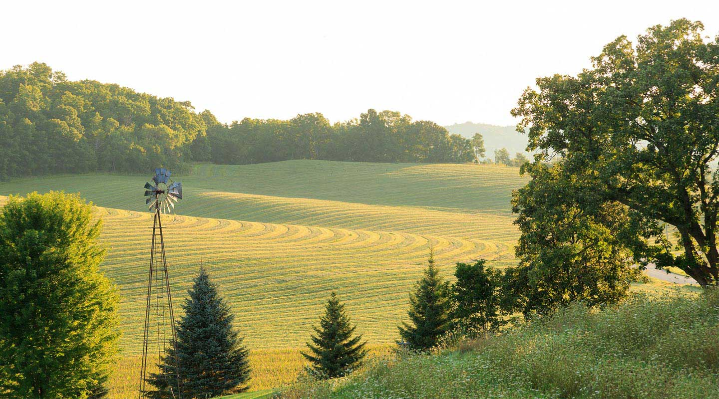 Best Wisconsin Vacations with great tree, alfalfa field, windmill views, Justin Trails Resort, Sparta