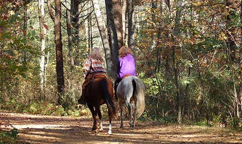attractions-horseback-riding-2