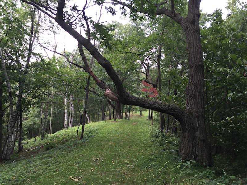 hiking trails-onsite-at-justin-trails-resort, Sparta, WI