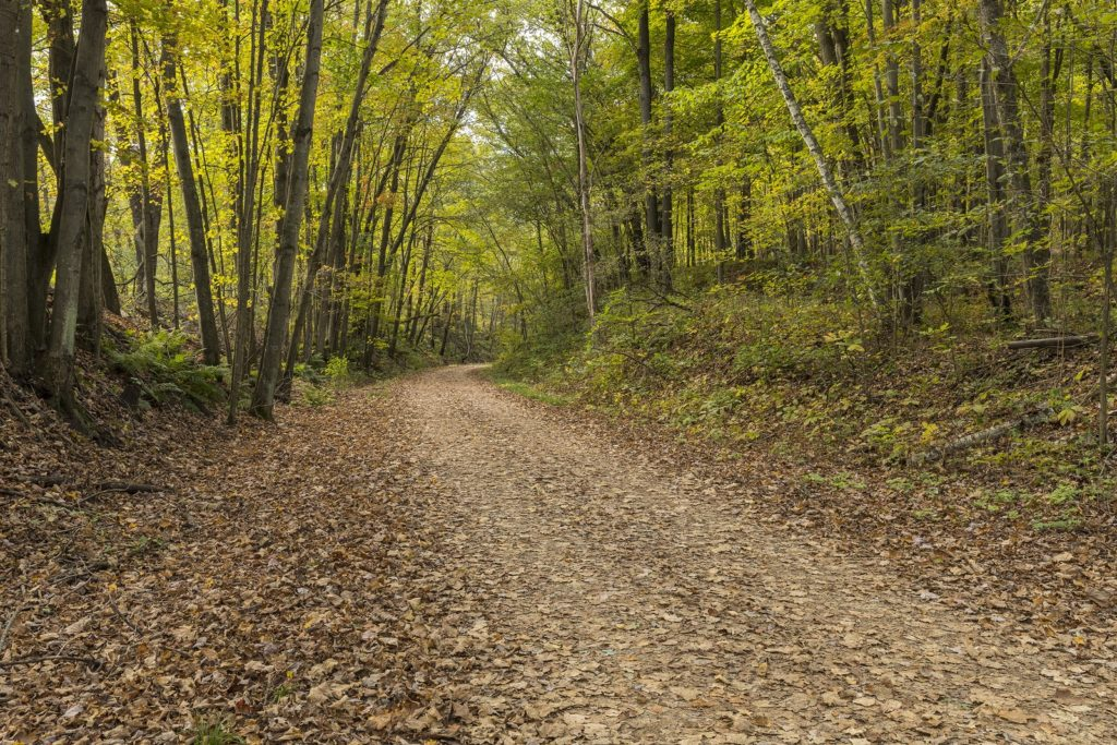 Biking The Elroy-Sparta Trail Near our Cabins in Wisconsin