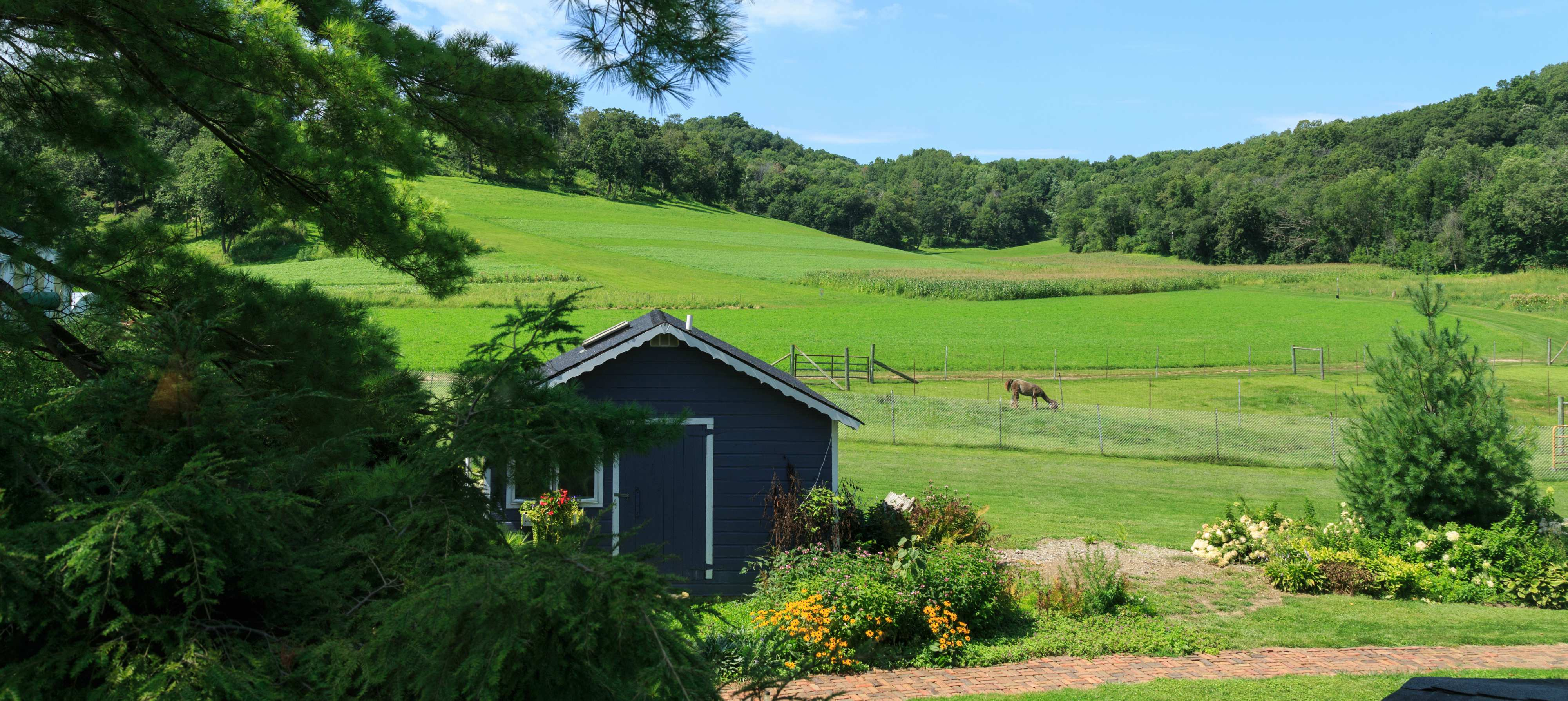 Family Vacation in Wisconsin  - The Cottage with view of llama pen, sledding hill and valley