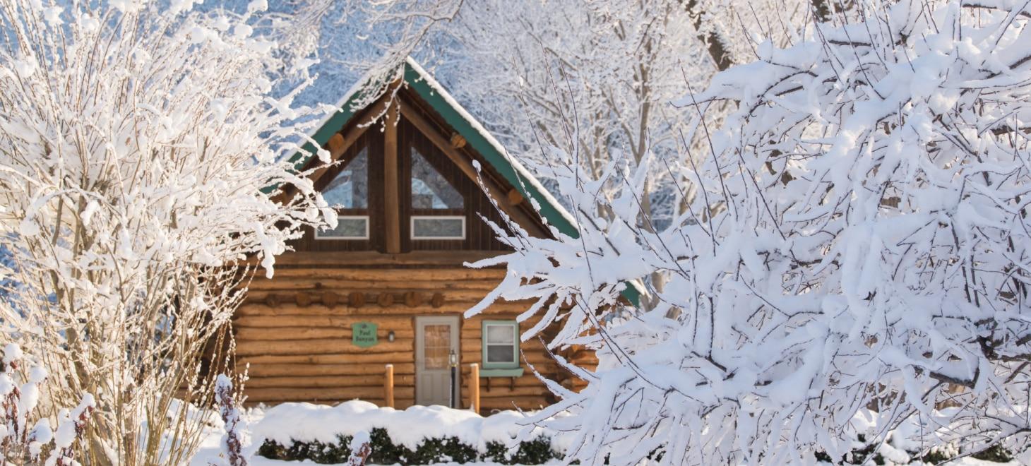 Best Family Resorts in Wisconsin - Dog-Friendly Log Cabin Sleeps 6 - Winter Paul Bunyan
